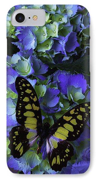 Blue Butterfly On Hydrangea IPhone Case by Garry Gay
