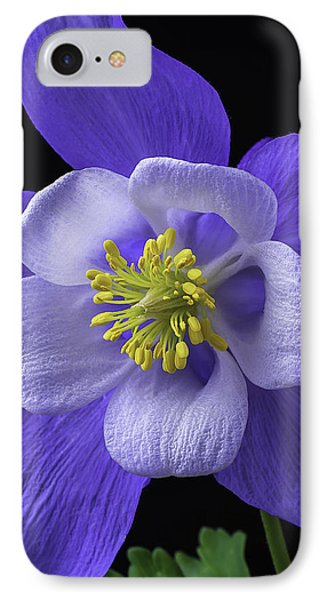 Blue Columbine IPhone Case