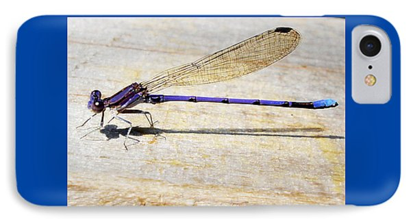IPhone Case featuring the photograph Blue Damselfly by Margie Avellino