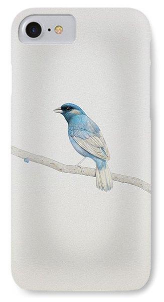 Blue IPhone Case by Diego Fernandez