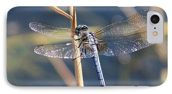 Blue Dragonfly Phone Case by Carol Groenen
