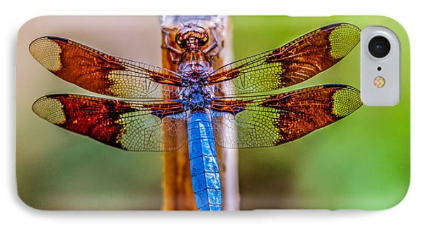Blue Dragonfly IPhone Case by Robert Bales