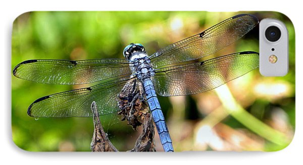 IPhone Case featuring the photograph Blue Dragonfly by Terri Mills