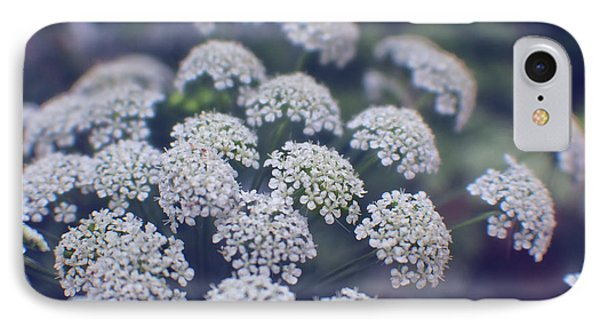 Blue Evening On Queen Anne's Lace IPhone Case