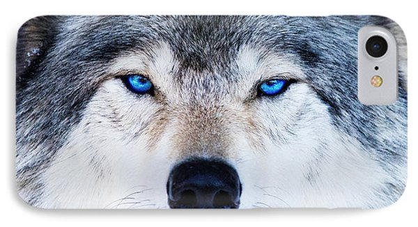 IPhone Case featuring the photograph Blue Eyed Wolf Portrait by Mircea Costina Photography