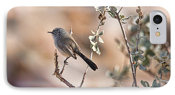 IPhone Case featuring the photograph Black-tailed Gnatcatcher by Dan McManus