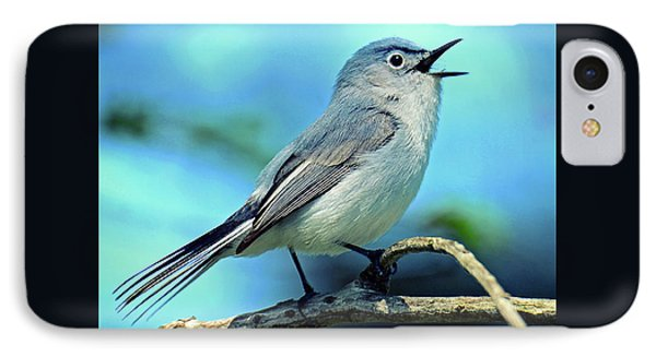 IPhone Case featuring the photograph Blue-gray Gnatcatcher by Rodney Campbell
