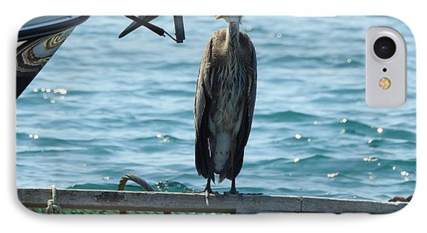 Blue Heron #2 IPhone Case
