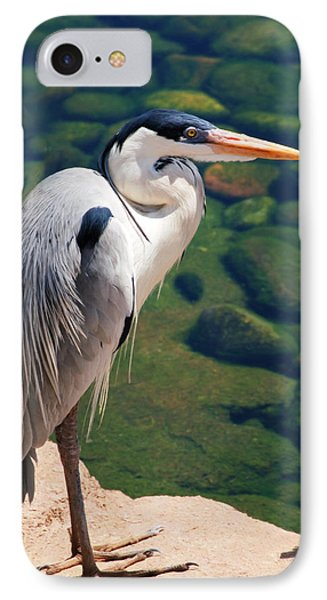 Blue Heron By The Water IPhone Case