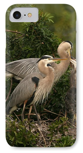 IPhone Case featuring the photograph Blue Heron Family by Shari Jardina