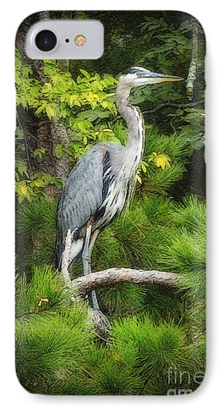 Blue Heron IPhone Case by Lydia Holly