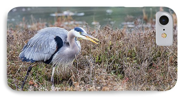 IPhone Case featuring the photograph Blue Heron On The Hunt by Eddie Yerkish
