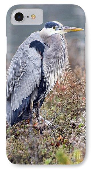 IPhone Case featuring the photograph Blue Heron Portrait by Eddie Yerkish