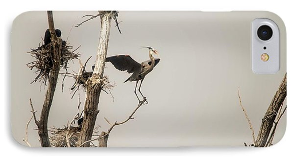 IPhone Case featuring the photograph Blue Heron Posing by David Bearden