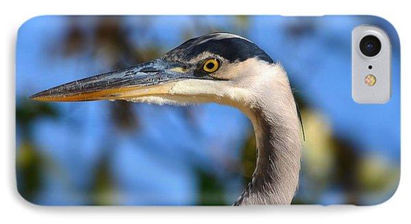 Blue Heron Profile IPhone Case by Kathy Eickenberg
