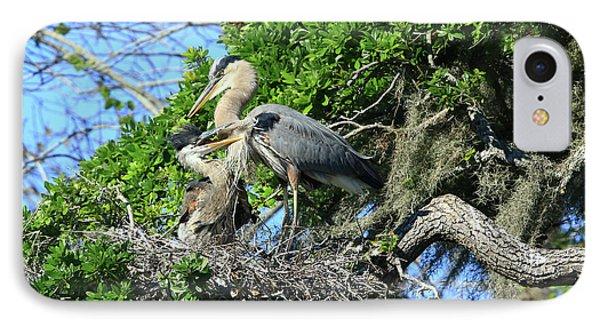 IPhone Case featuring the photograph Blue Heron Series Baby 1 by Deborah Benoit