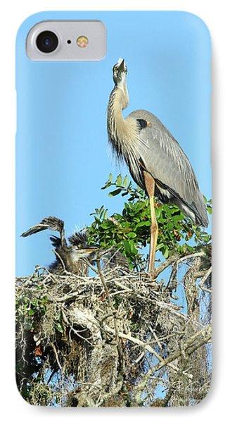 IPhone Case featuring the photograph Blue Heron Series Baby 2 by Deborah Benoit