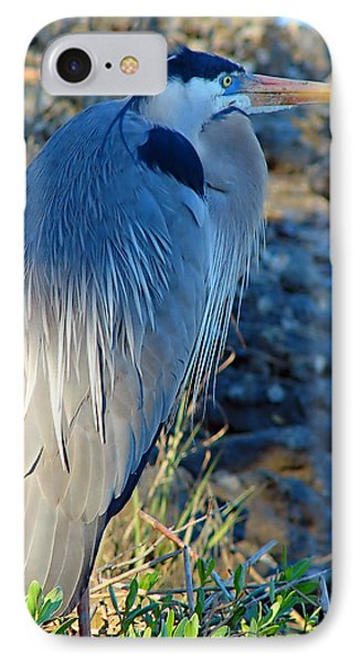 Blue Heron Visions Phone Case by Nada Frazier