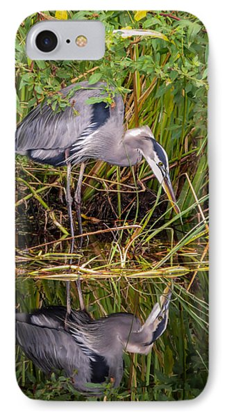 Blue Heron IPhone Case by Zina Stromberg