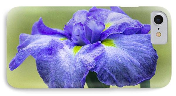 Blue Iris IPhone Case by Venetia Featherstone-Witty