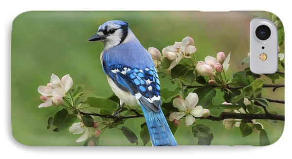 Bluejay iPhone 7 Case - Blue Jay And Blossoms by Lori Deiter