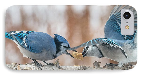 Blue Jay Battle IPhone Case by Patti Deters