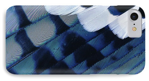 Blue Jay Cyanocitta Cristata Feathers Phone Case by Rolf Nussbaumer