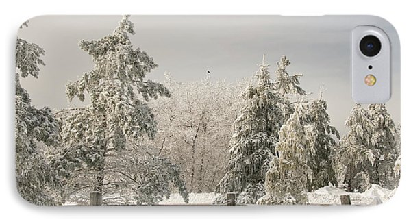 Blue Knob Winter IPhone Case by Lois Bryan