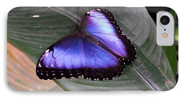 Blue Morph IPhone Case by David and Lynn Keller