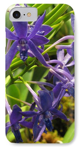 IPhone Case featuring the photograph Blue Orchid by Alfred Ng