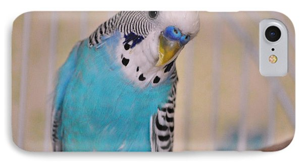 Parakeet iPhone 7 Case - Blue Parakeet by Jai Johnson