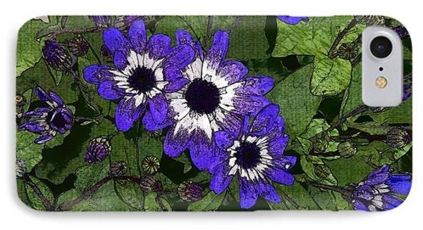 Blue Pericallis Senetti IPhone Case by Mina Thompson