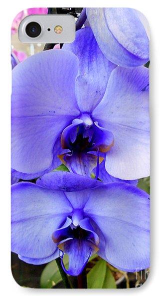 Blue Phalaenopsis Orchid IPhone Case