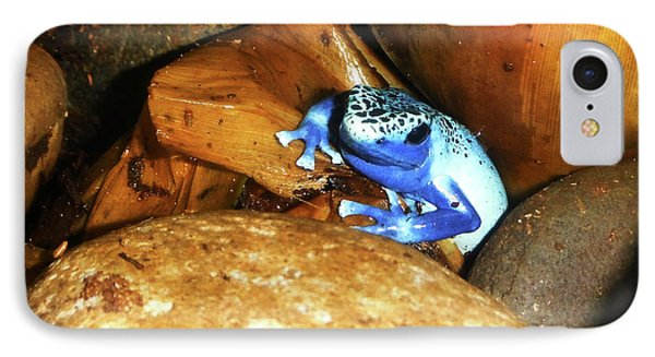 IPhone Case featuring the photograph Blue Poison Dart Frog by Anthony Jones
