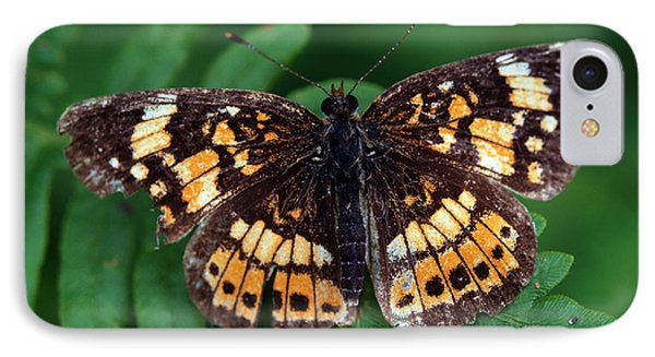 IPhone Case featuring the photograph Blue Ridge Butterfly by Kay Lovingood