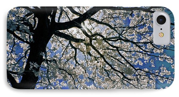 IPhone Case featuring the photograph Blue Skies Smiling At Me by Linda Unger