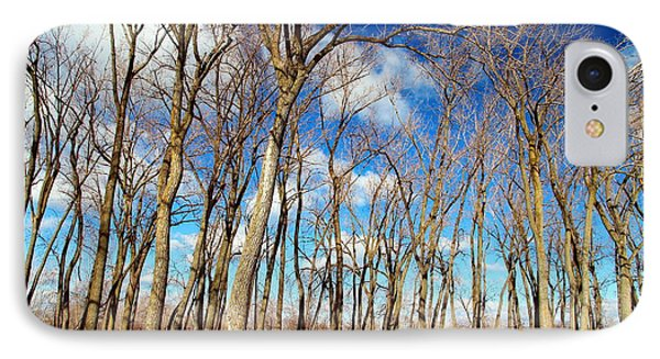 IPhone Case featuring the photograph Blue Sky And Trees by Valentino Visentini
