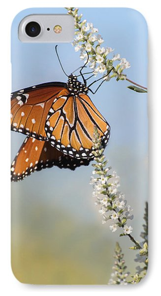 IPhone Case featuring the photograph Blue Sky Dancer  by Julie Andel