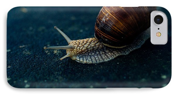 Blue Snail IPhone Case by Pati Photography