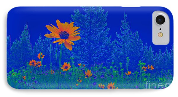 Blue Summer IPhone Case by Janice Westerberg