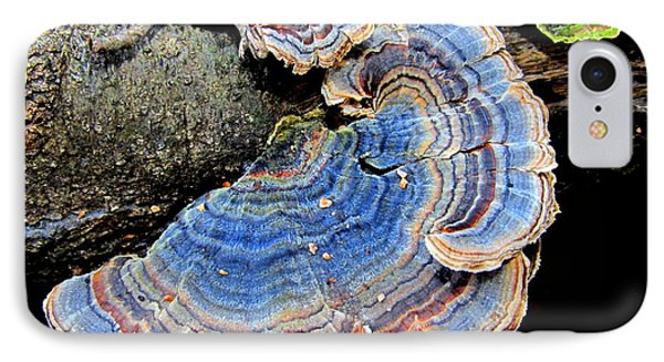 Blue Turkeytail Fungi Phone Case by Joshua Bales