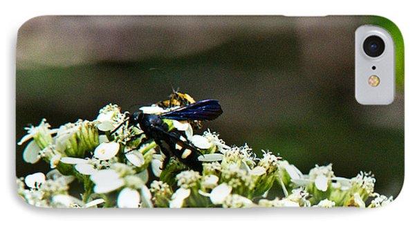 Blue Wasp 2 Phone Case by Douglas Barnett