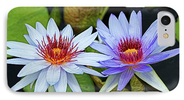 IPhone Case featuring the photograph Blue Water Lilies by Judy Vincent