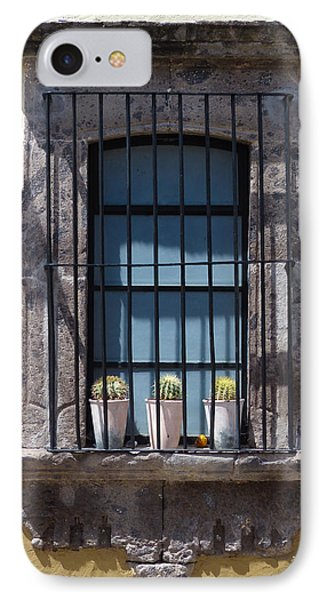 Blue Window With Cactus IPhone Case by Douglas J Fisher
