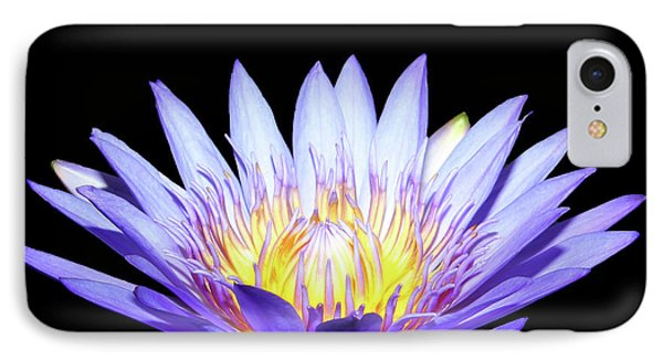 IPhone Case featuring the photograph Blue Wonder by Judy Vincent
