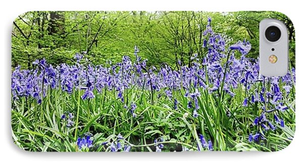 #bluebell #flowers #spring  #woodland Phone Case by Natalie Anne