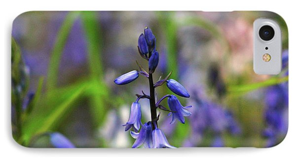 Bluebell IPhone Case by Martina Fagan