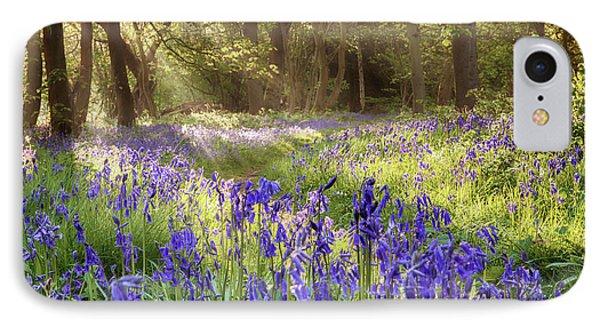Bluebells Woodland Path With Glowing Sunrise Light IPhone Case