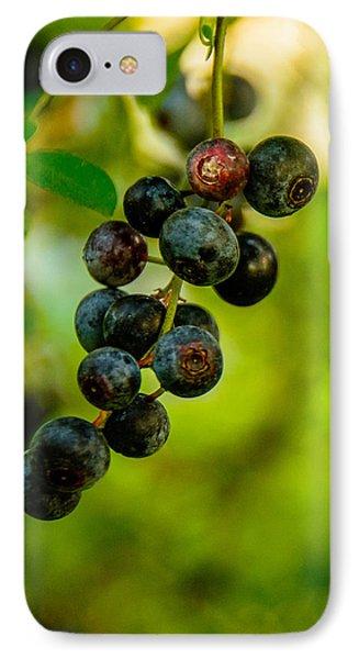 Blueberries IPhone Case by John Harding