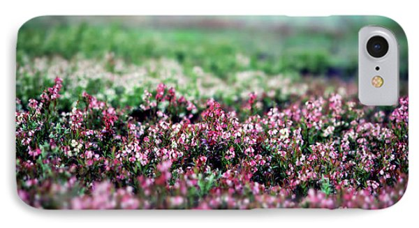 IPhone Case featuring the photograph Blueberry Blossoms  by Alana Ranney